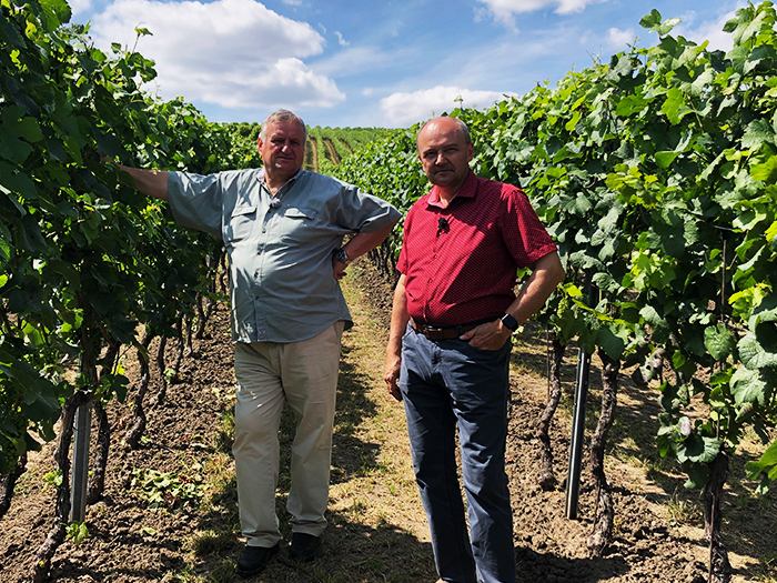 The 'Great Wines of Great Vineyards' association gets support from the Viticultural Fund.